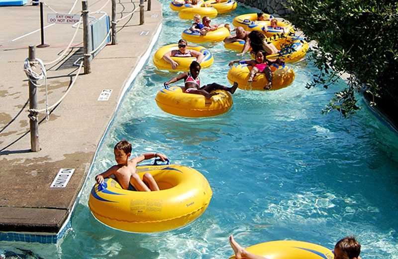 Am image of the Safari River at Enchanted Forest Water Safari. There is a group of people in yellow and blue tubes floating down the river. To the right of the river is greenery, and to the left is pavement with a rope fence around the river.
