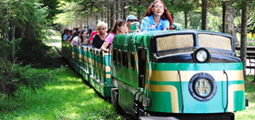 Image of the Enchanted Forest Express going through the woods. An employee is at the front of the ride taking the guests through the woods on the train.