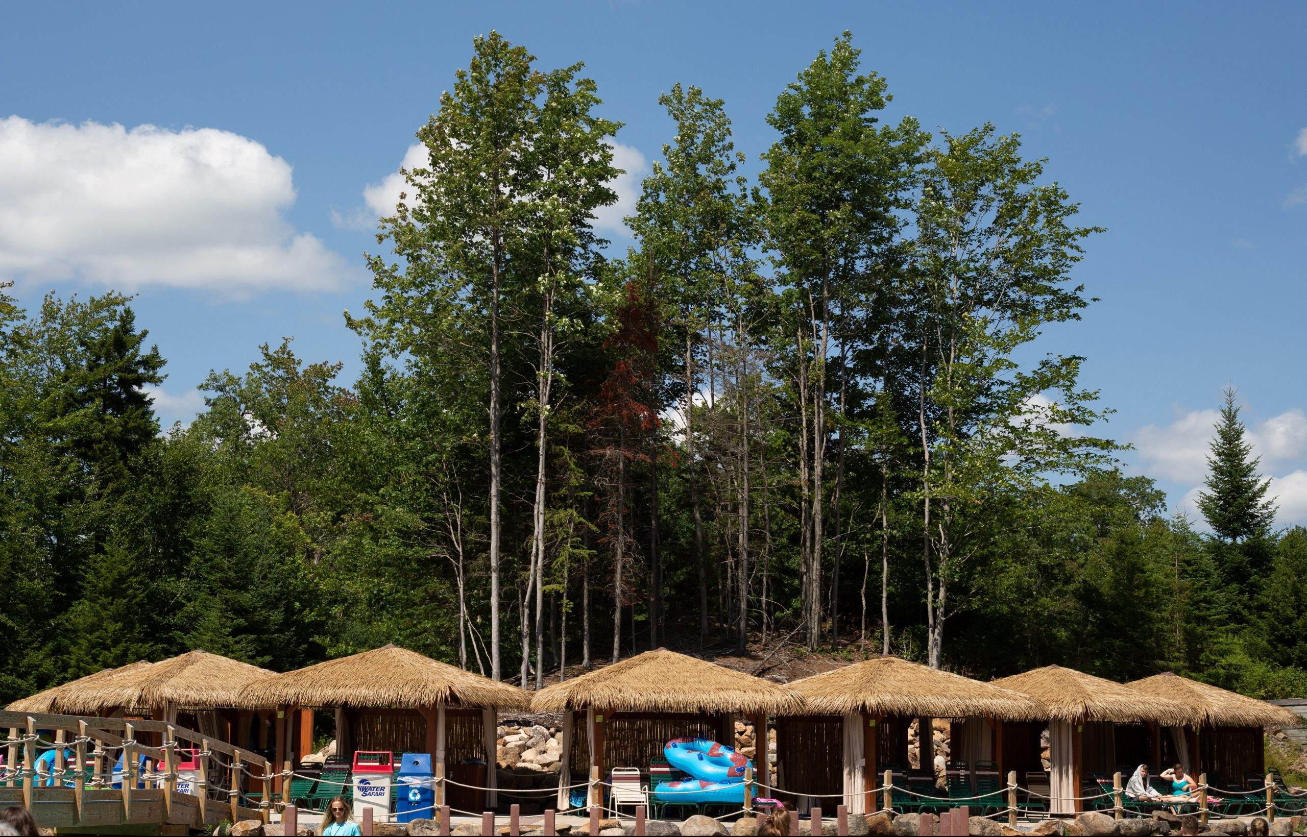 Image of the cabanas with tall trees in the background.