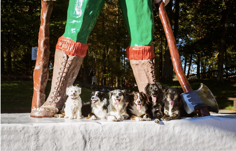 six dogs sitting at the feet of the Paul Bunyan statue at water safari