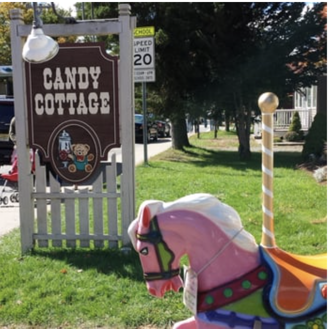 Picture of the cary cottage sign and a pink carousel horse next to it